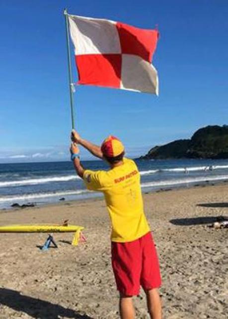 国際信号旗の「U旗」で警報を知らせることも一案だ(写真:検討会資料より)