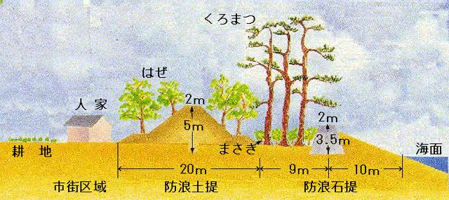 P4 1 広村堤防横断図(気象庁HPより) - 「稲むらの火」と防災教育